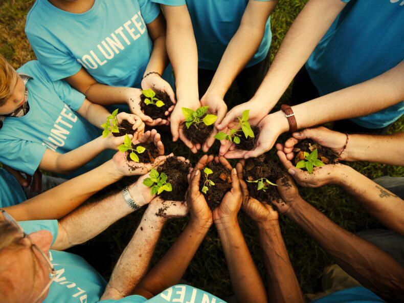 Le Organizzazioni di Volontariato (O.D.V.)